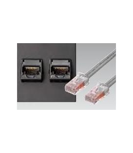Datenplatte mit zwei Telefon-/ Datenbuchse Systimax